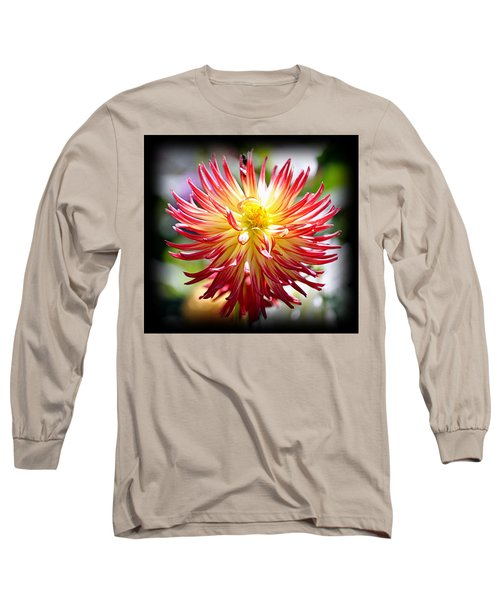 Long Sleeve T-Shirt featuring the photograph Flaming Beauty by AJ Schibig