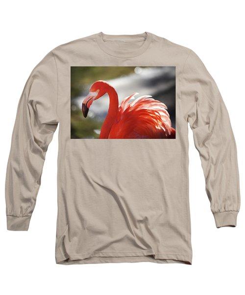 Flamingo 2 Long Sleeve T-Shirt