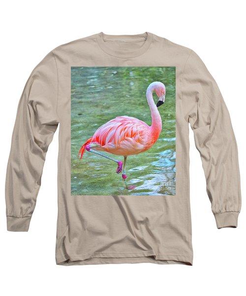 Flamingo 39 Long Sleeve T-Shirt