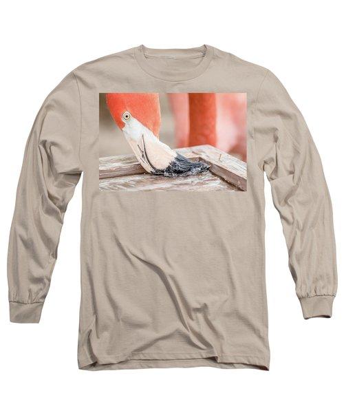 Flamingo At Sea World In Orlando Florida Long Sleeve T-Shirt