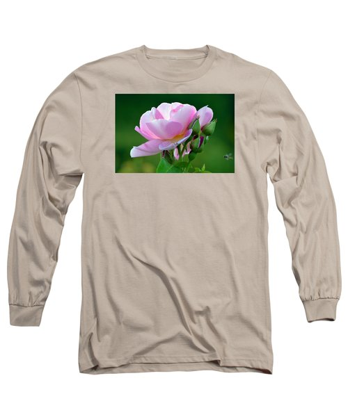 Flight Of The Pollinator. Long Sleeve T-Shirt by Terence Davis