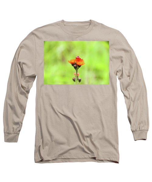 Fll-2 Long Sleeve T-Shirt
