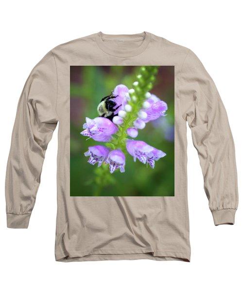 Long Sleeve T-Shirt featuring the photograph Flower Climbing by Eduard Moldoveanu