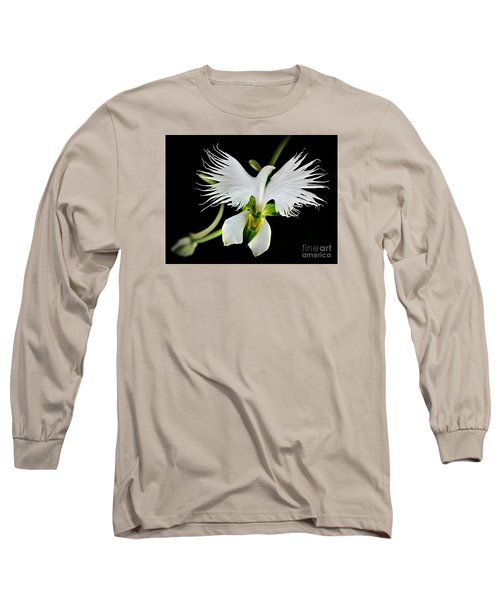 Flower Oddities - Flying White Bird Flower Long Sleeve T-Shirt by Merton Allen