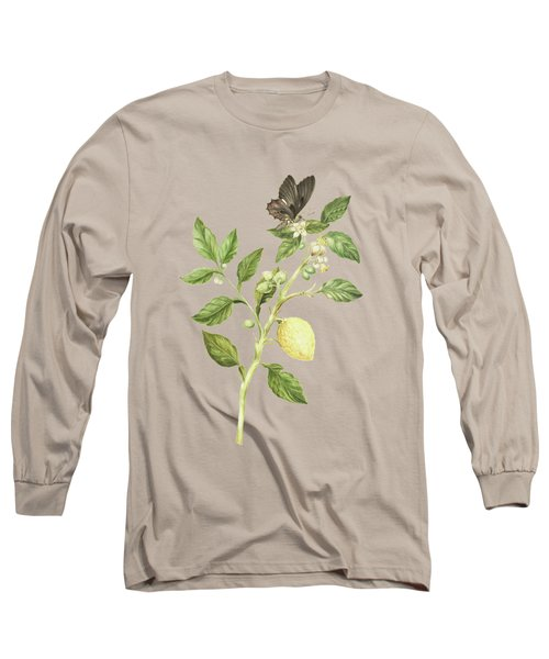 Flowering Branch Of Lemon Tree Fruit And Butterfly By Cornelis Markee 1763 Long Sleeve T-Shirt