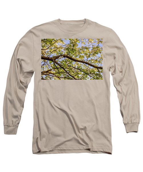 Flowering Crab Apple Long Sleeve T-Shirt