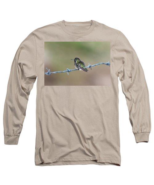 Fluffy Hummingbird Long Sleeve T-Shirt