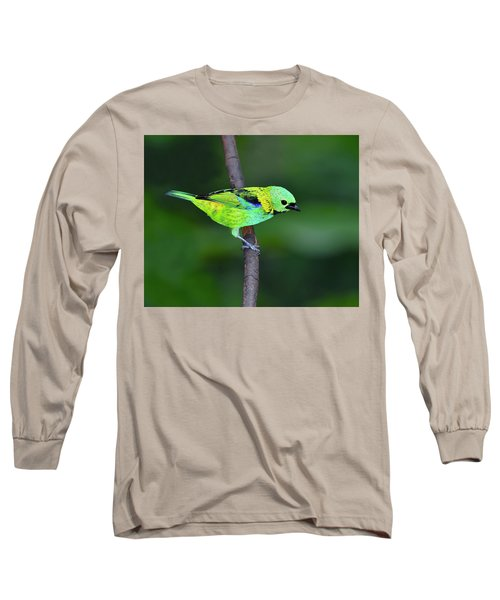 Forest Edge Long Sleeve T-Shirt by Tony Beck
