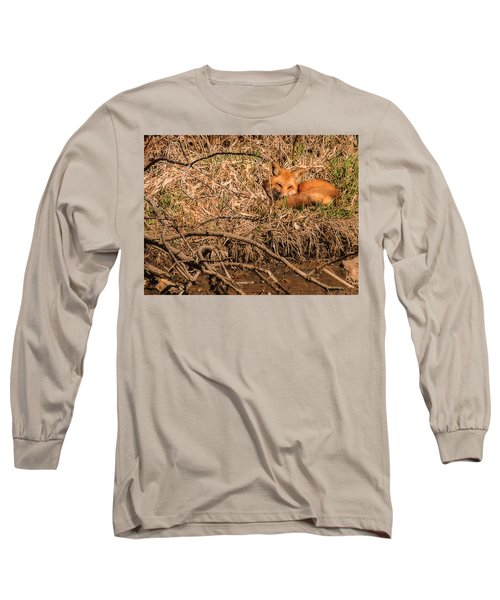 Fox  Long Sleeve T-Shirt by Edward Peterson