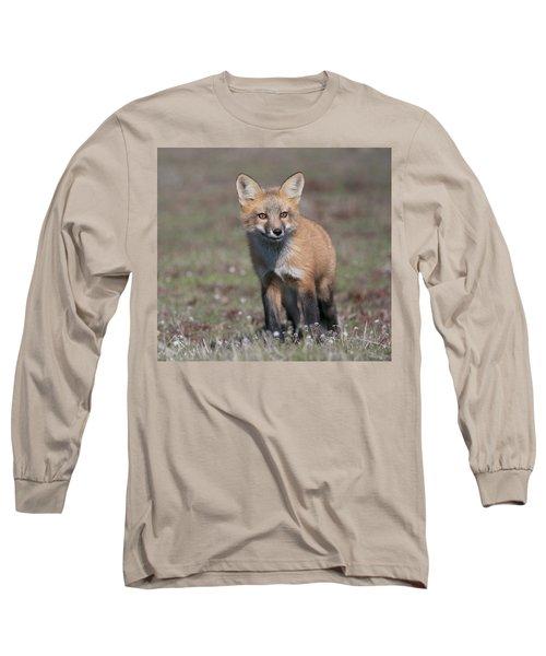 Long Sleeve T-Shirt featuring the photograph Fox Kit by Elvira Butler
