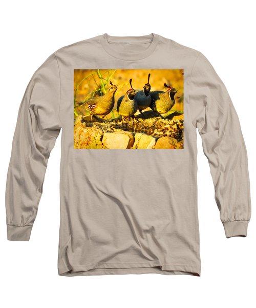 Gambel's Quail Foursome Long Sleeve T-Shirt
