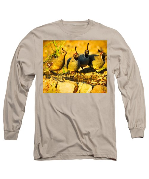 Gambel's Quail Foursome Long Sleeve T-Shirt