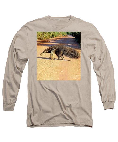 Giant Anteater Crosses The Transpantaneira Highway In Brazil Long Sleeve T-Shirt by Nareeta Martin