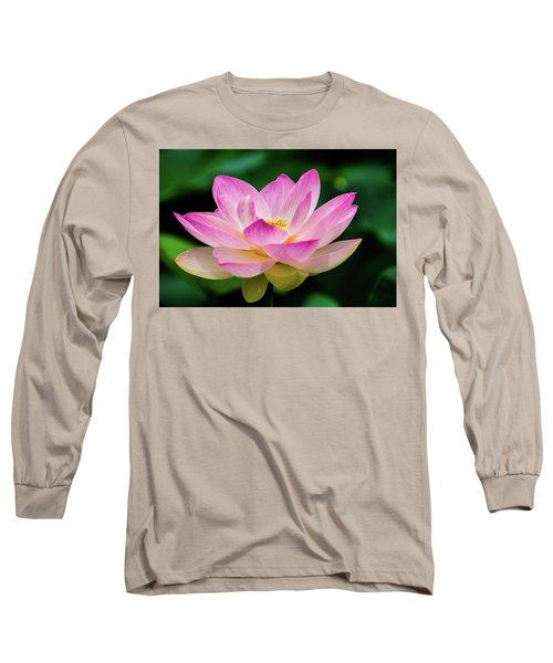 Gigantic Lotus Red Lily Long Sleeve T-Shirt