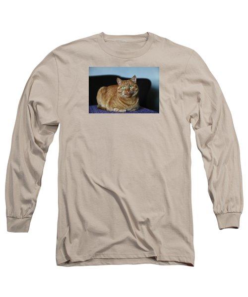 Long Sleeve T-Shirt featuring the photograph Ginger Marmalade Cat by Nareeta Martin