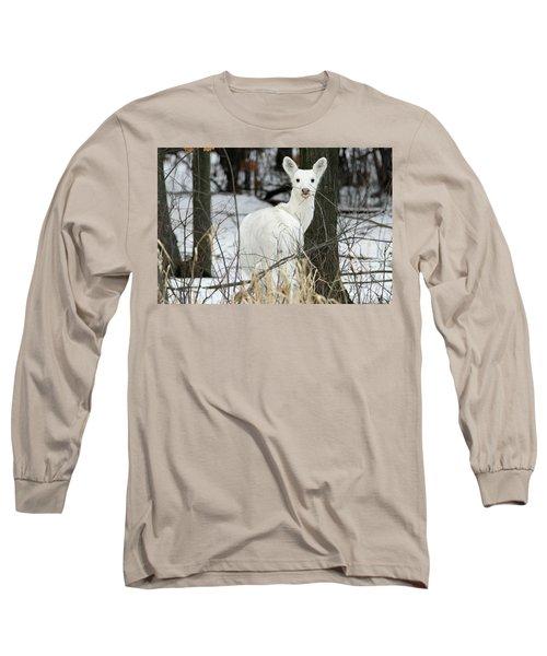 Giving Raspberries Long Sleeve T-Shirt by Brook Burling