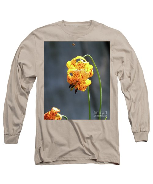 God's Classic Work In The Wilderness Long Sleeve T-Shirt