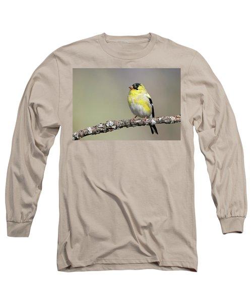 Gold Finch Long Sleeve T-Shirt