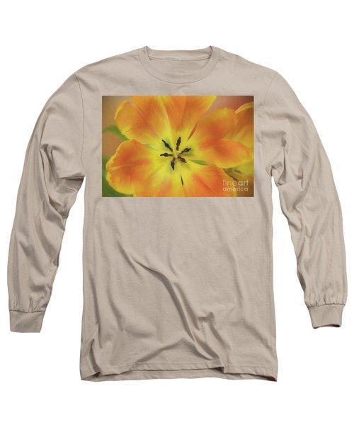 Gold Tulip Explosion Long Sleeve T-Shirt
