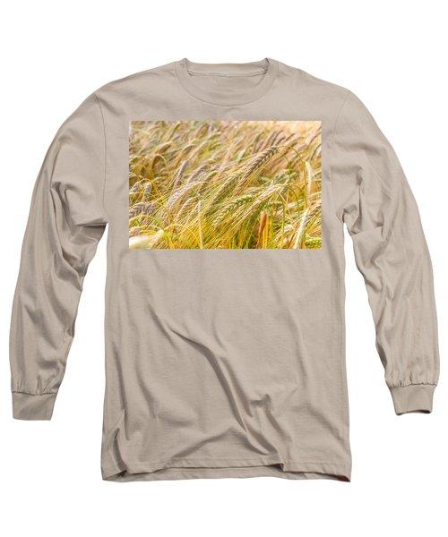 Golden Barley. Long Sleeve T-Shirt