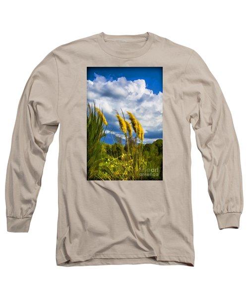 Golden Fluff Long Sleeve T-Shirt by Rick Bragan