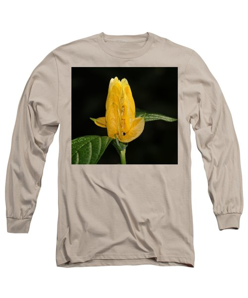 Golden Shrimp Plant Long Sleeve T-Shirt