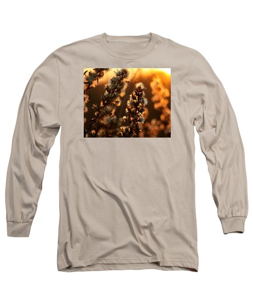 Goldenrod At Sunset Long Sleeve T-Shirt