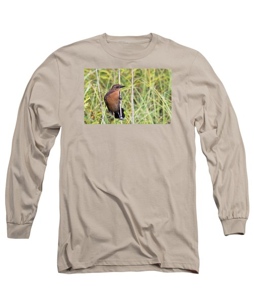Grackle In The Reeds Long Sleeve T-Shirt by Kenneth Albin