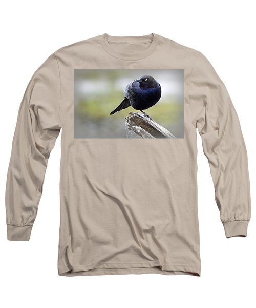Grackle Resting Long Sleeve T-Shirt