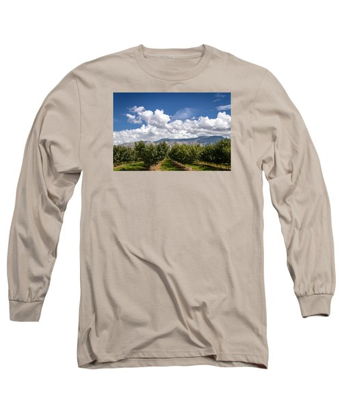 Grand Valley Orchards Long Sleeve T-Shirt by Teri Virbickis