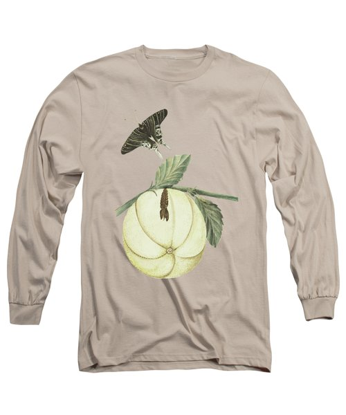 Grapefruit With Leaves Caterpillar And Butterfly By Cornelis Markee 1763 Long Sleeve T-Shirt