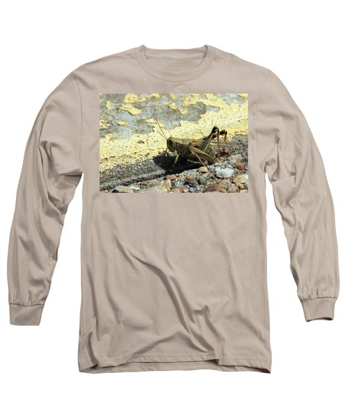 Grasshopper Laying Eggs Long Sleeve T-Shirt