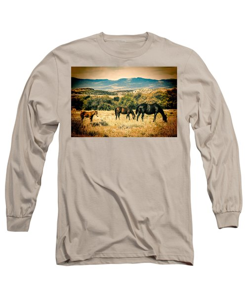 Grazing Long Sleeve T-Shirt by Fred Larson
