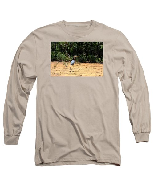 Long Sleeve T-Shirt featuring the photograph Great Blue Heron On Beach by Sheila Brown
