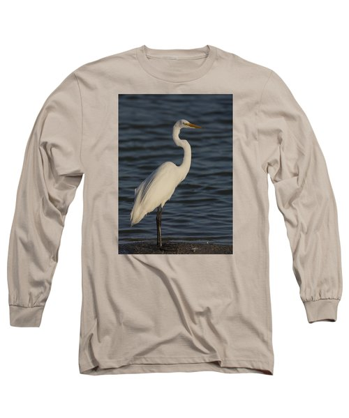 Great Egret In The Last Light Of The Day Long Sleeve T-Shirt