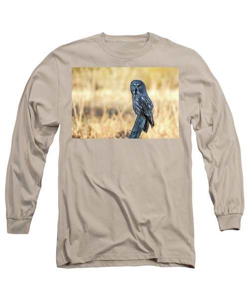 Great Grey Perching Long Sleeve T-Shirt by Torbjorn Swenelius