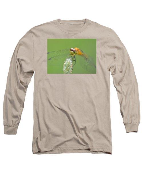 Green Angles Long Sleeve T-Shirt by Janet Rockburn