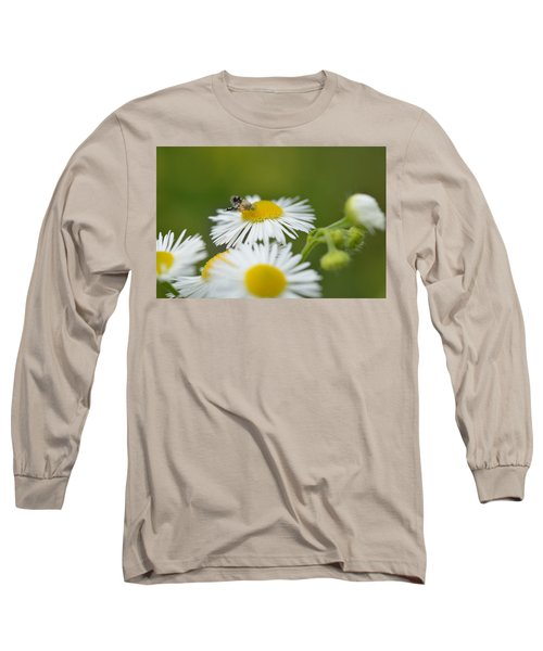 Green Eyes Long Sleeve T-Shirt by Janet Rockburn