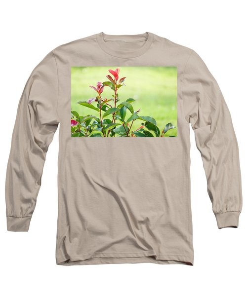 Greenery And Red Long Sleeve T-Shirt
