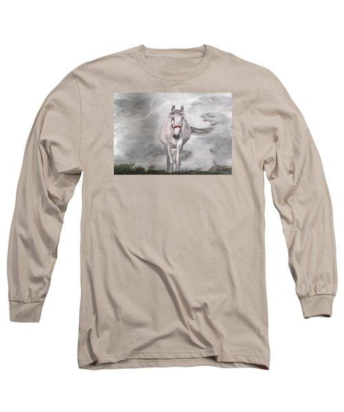 Grey On Grey Long Sleeve T-Shirt by Carole Robins