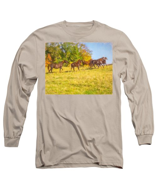 Group Of Morgan Horses Trotting Through Autumn Pasture. Long Sleeve T-Shirt