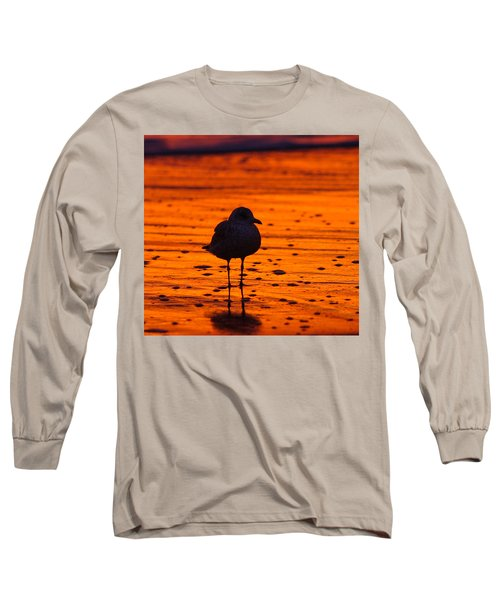 Gull Caught At Sunrise Long Sleeve T-Shirt