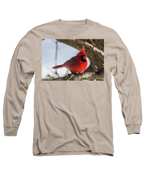 Happy Mister Cardinal Long Sleeve T-Shirt