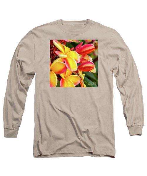 Hawaii Plumeria Flowers In Bloom Long Sleeve T-Shirt