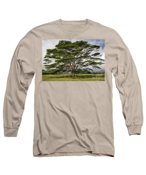 Hawaiian Moluccan Albizia Tree Long Sleeve T-Shirt