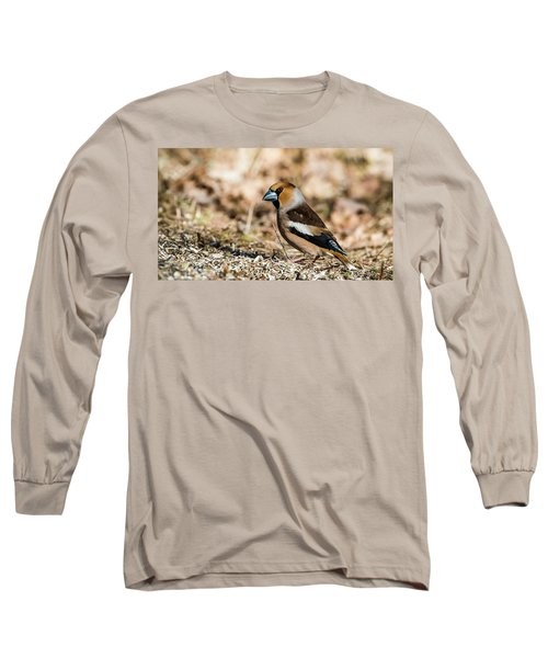 Long Sleeve T-Shirt featuring the photograph Hawfinch's Gaze by Torbjorn Swenelius