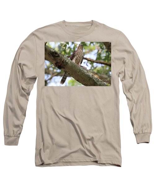 Hawk On A Branch Long Sleeve T-Shirt