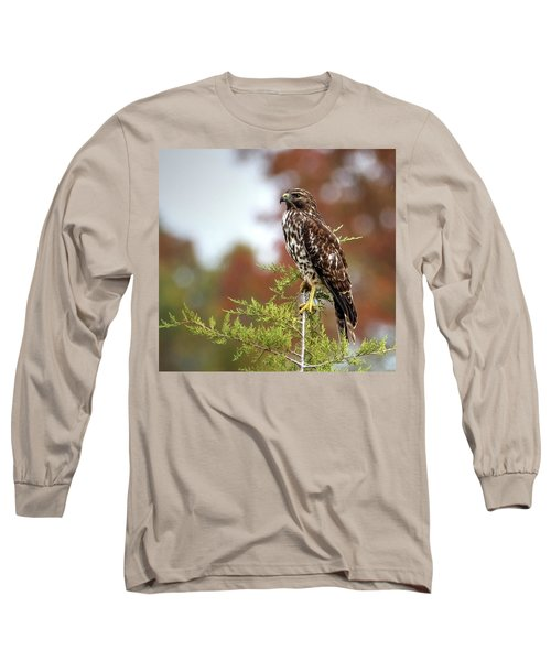 Red Shoulder Hawk Profile Long Sleeve T-Shirt