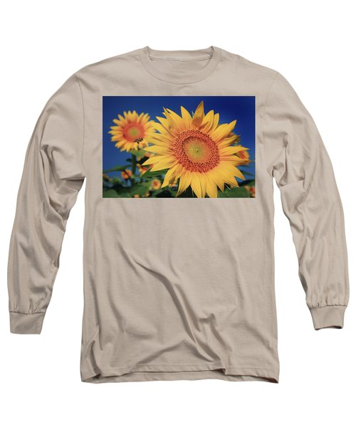 Long Sleeve T-Shirt featuring the photograph Heading For Gold by Chris Berry