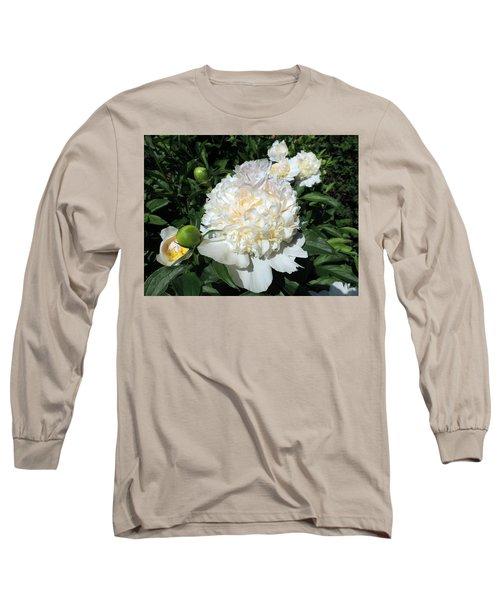 Heavenly White Long Sleeve T-Shirt by Teresa Schomig